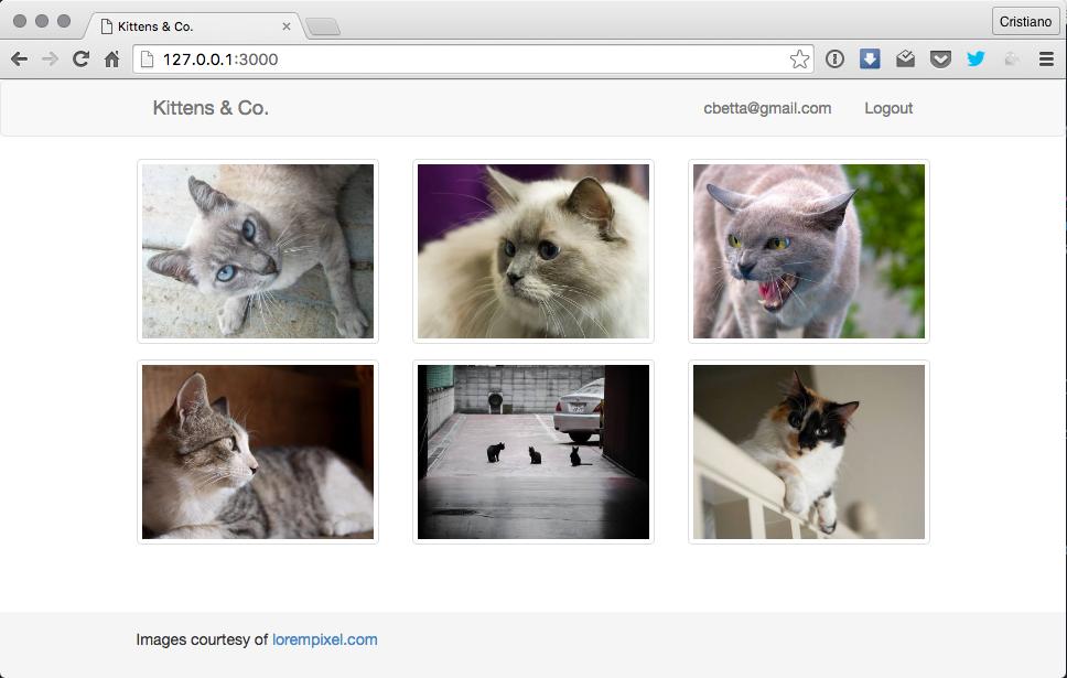 Kittens & Co