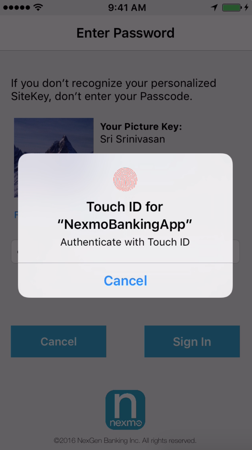 Touch ID requested