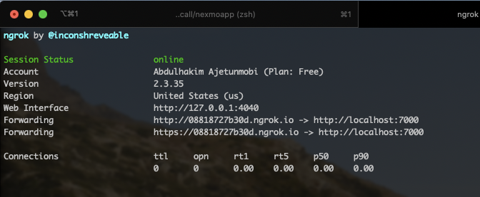 Ngrok running in the terminal